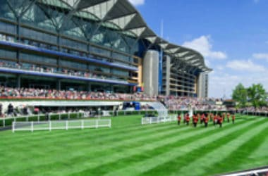 Ladies Day Tickets - Faltin Travel