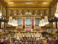 Erleben Sie die Wiener Philharmoniker während des Neujahrskonzerts im festlich geschmückten Musikvereinssaal.