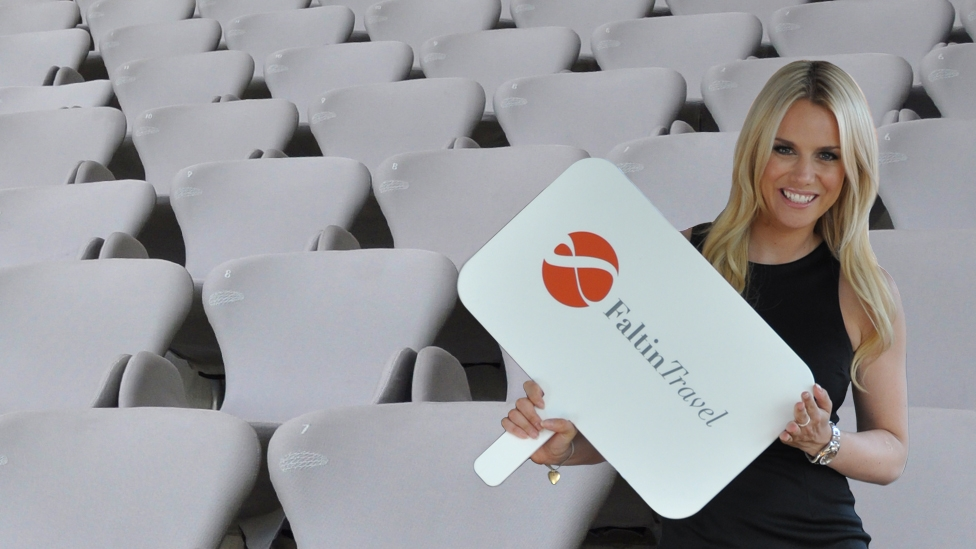 Allianz Arena - Business Seats